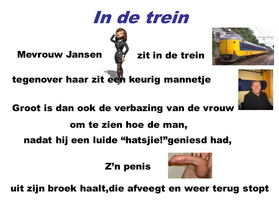 In de trein Mevrouw Jansen zit in de trein