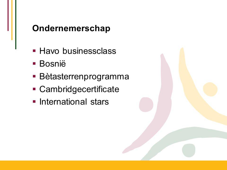 Ondernemerschap Havo businessclass. Bosnië. Bètasterrenprogramma.