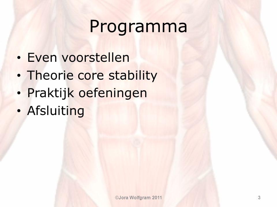 Programma Even voorstellen Theorie core stability Praktijk oefeningen