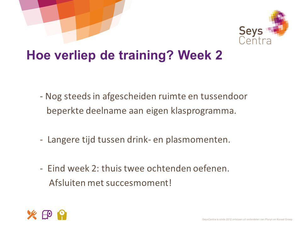 Hoe verliep de training Week 2