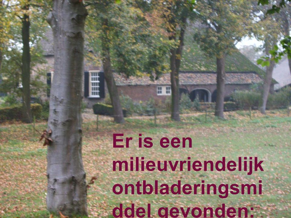 Er is een milieuvriendelijk ontbladeringsmiddel gevonden: de herfst