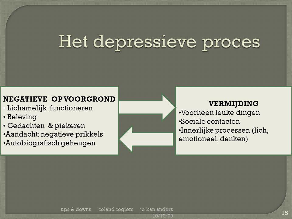 Het depressieve proces