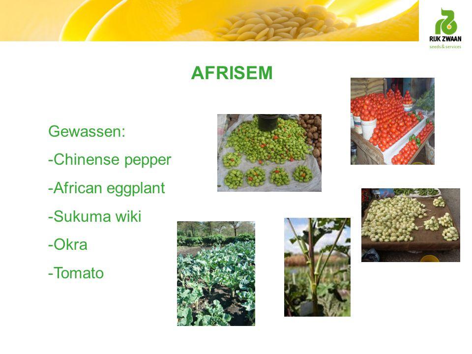 AFRISEM Gewassen: -Chinense pepper -African eggplant -Sukuma wiki