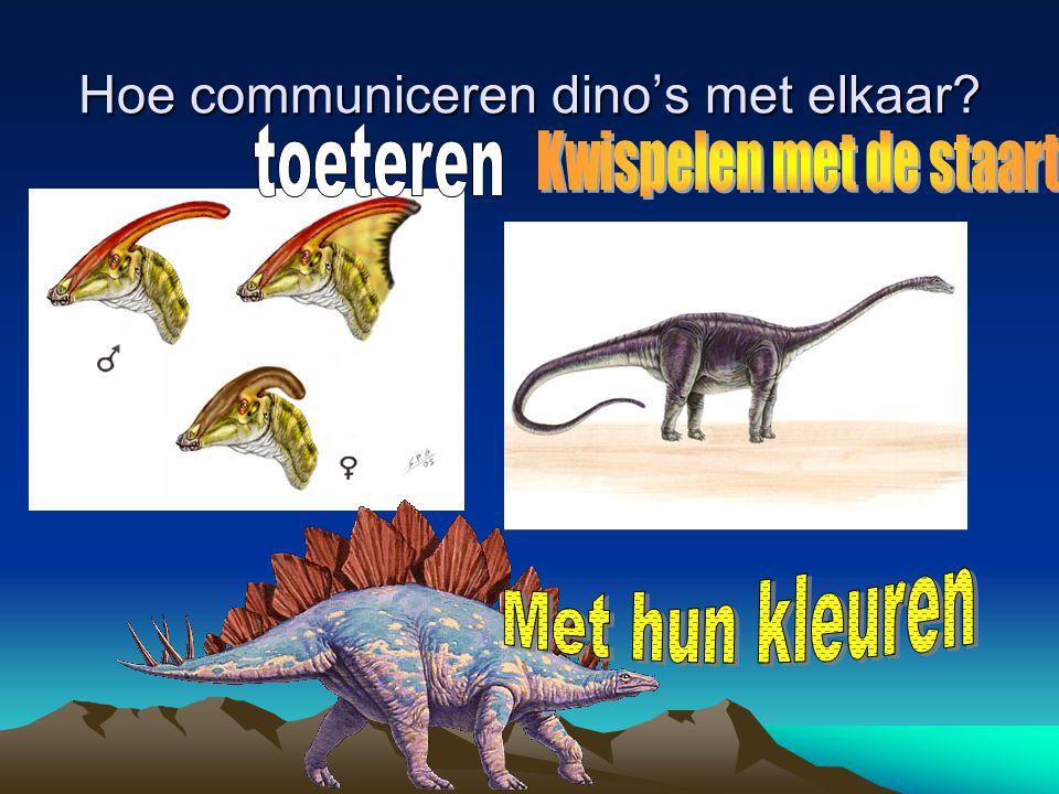 Hoe communiceren dino's met elkaar