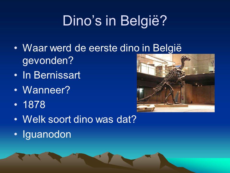 Dino's in België Waar werd de eerste dino in België gevonden