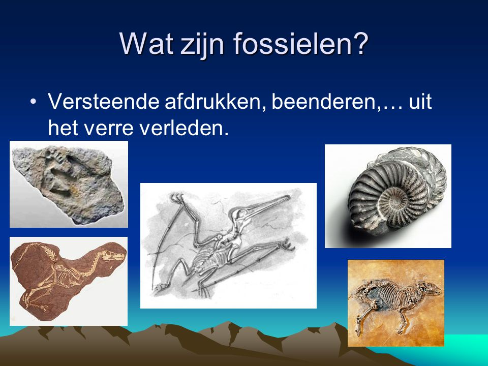 Wat zijn fossielen Versteende afdrukken, beenderen,… uit het verre verleden.