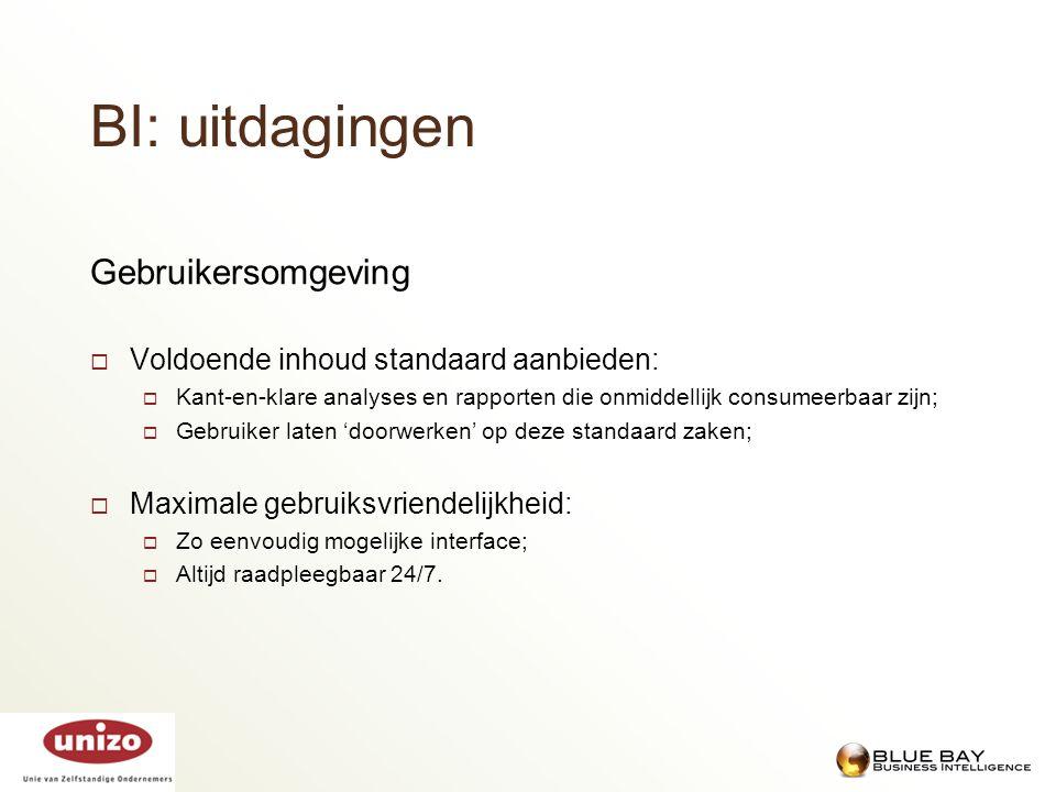 BI: uitdagingen Gebruikersomgeving