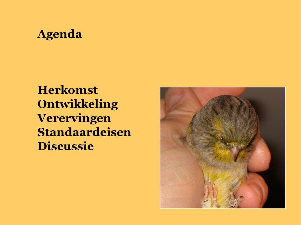 Agenda Herkomst Ontwikkeling Verervingen Standaardeisen Discussie