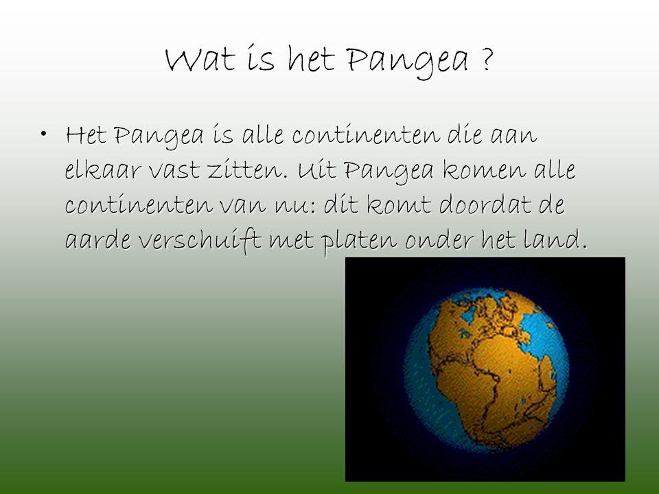 Wat is het Pangea