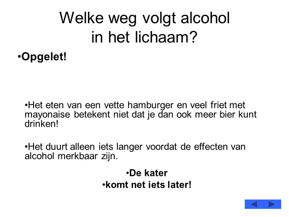 Welke weg volgt alcohol in het lichaam