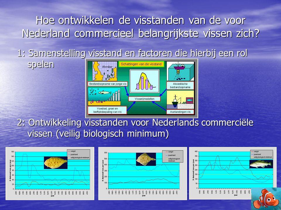 Hoe ontwikkelen de visstanden van de voor Nederland commercieel belangrijkste vissen zich