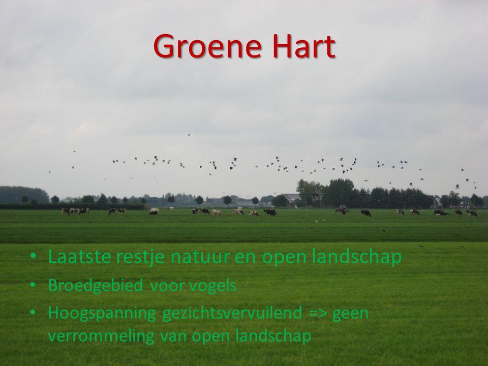Groene Hart Laatste restje natuur en open landschap
