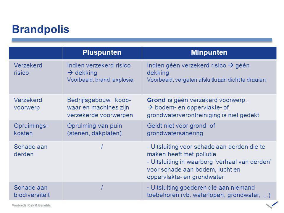 Brandpolis Pluspunten Minpunten Verzekerd risico