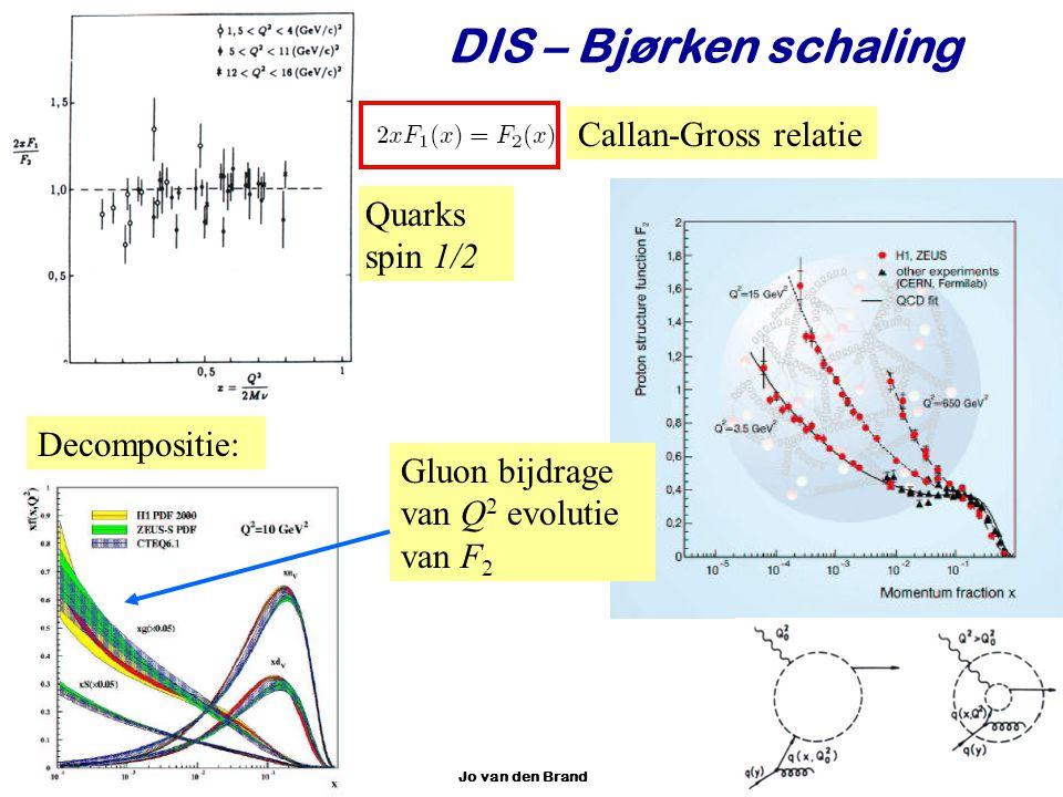 DIS – Bjørken schaling Callan-Gross relatie Quarks spin 1/2