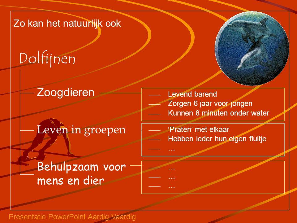 Dolfijnen Zoogdieren Leven in groepen Behulpzaam voor mens en dier