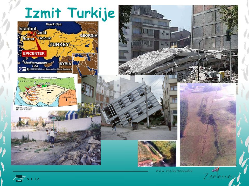 Izmit Turkije Kaart: http://www.cnn.com/WORLD/europe/9908/20/turkey.quake.02/turkey.izmit.bursa.quake.jpg.