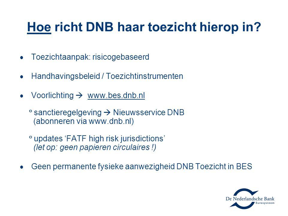 Hoe richt DNB haar toezicht hierop in