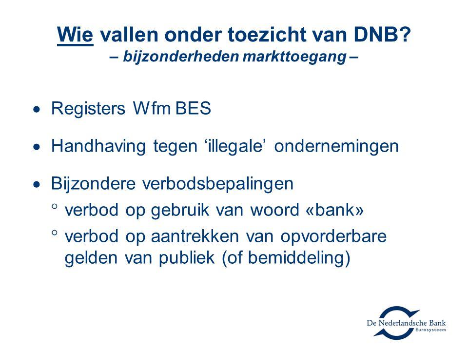 Wie vallen onder toezicht van DNB – bijzonderheden markttoegang –