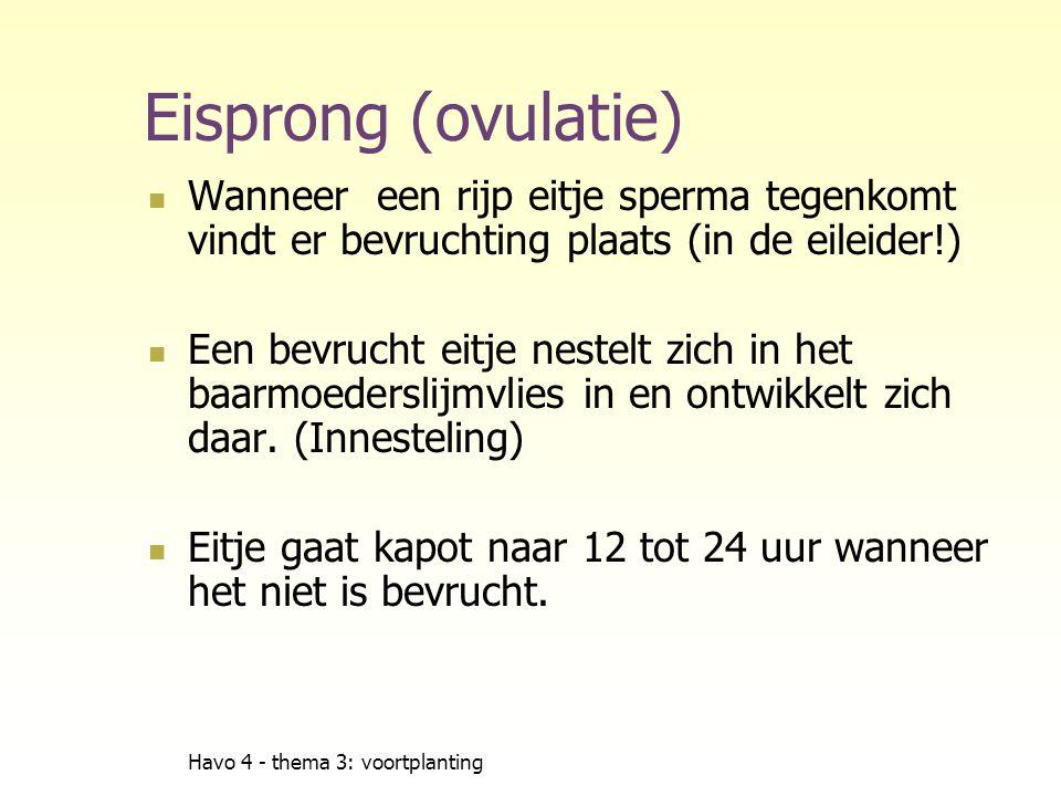 Eisprong (ovulatie) Wanneer een rijp eitje sperma tegenkomt vindt er bevruchting plaats (in de eileider!)