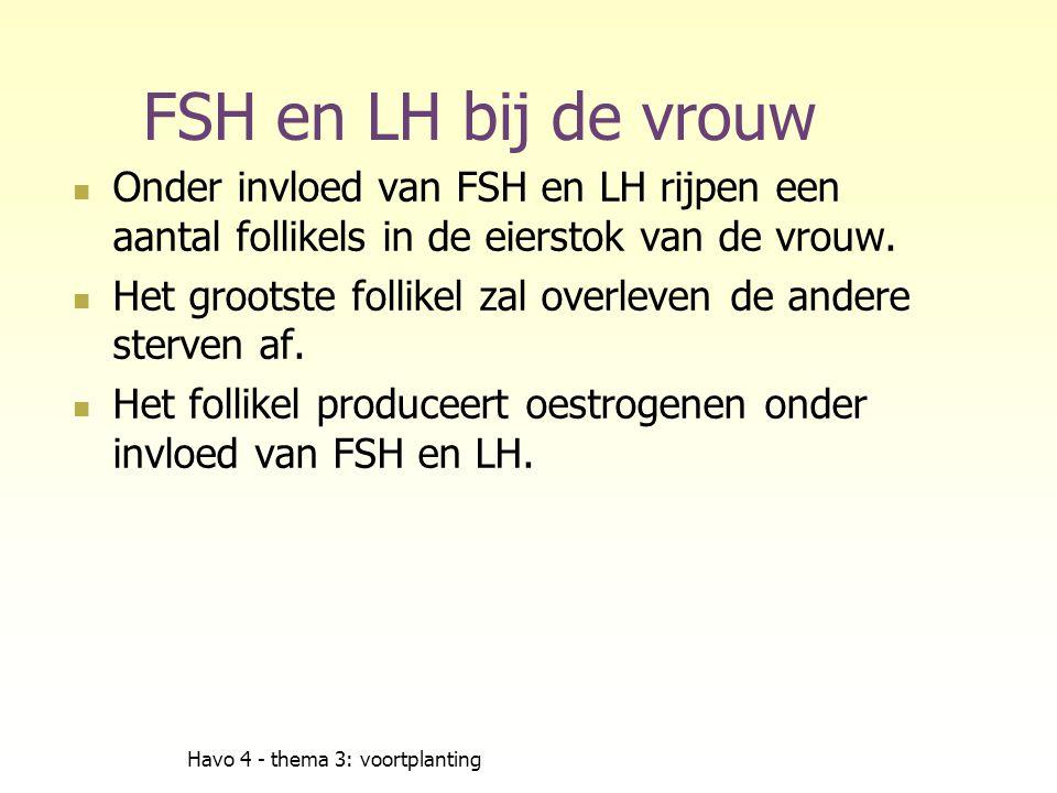 FSH en LH bij de vrouw Onder invloed van FSH en LH rijpen een aantal follikels in de eierstok van de vrouw.