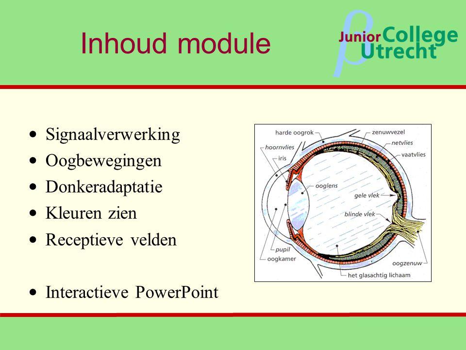 Inhoud module Signaalverwerking Oogbewegingen Donkeradaptatie