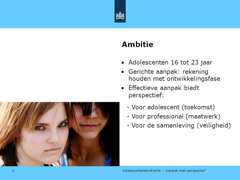 Ambitie Adolescenten 16 tot 23 jaar