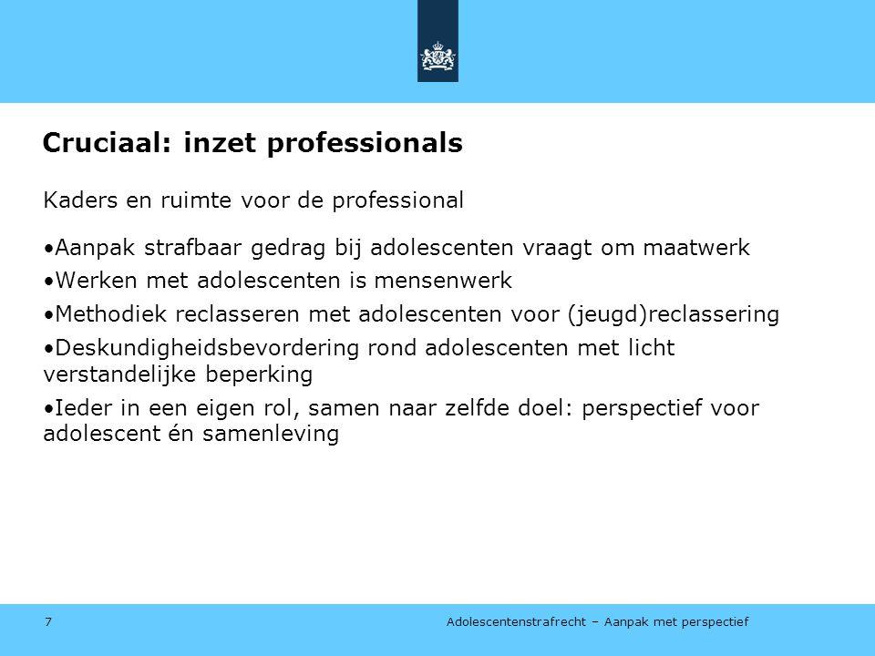 Cruciaal: inzet professionals