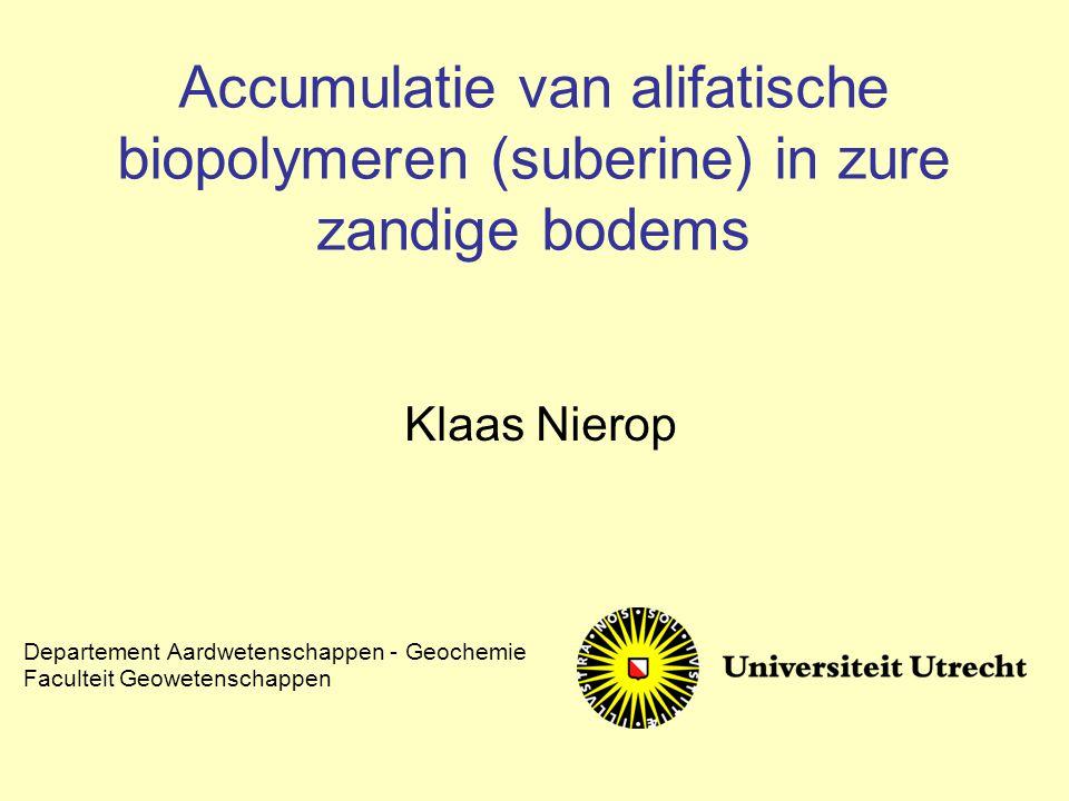 Accumulatie van alifatische biopolymeren (suberine) in zure zandige bodems