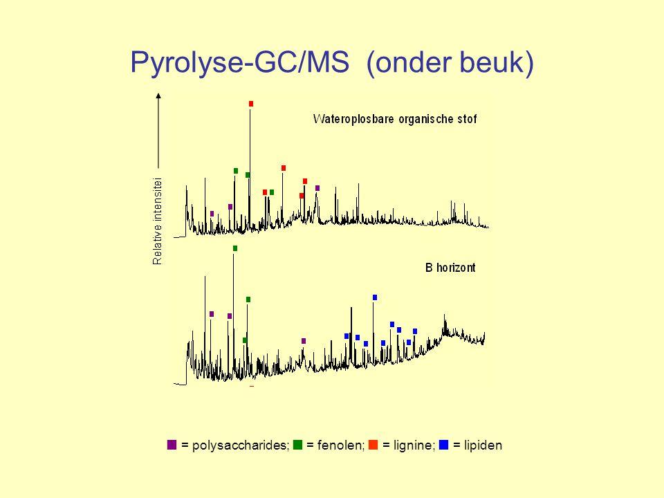 Pyrolyse-GC/MS (onder beuk)