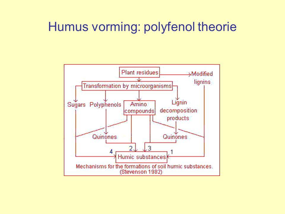 Humus vorming: polyfenol theorie