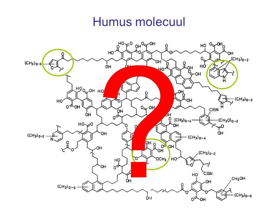 Humus molecuul