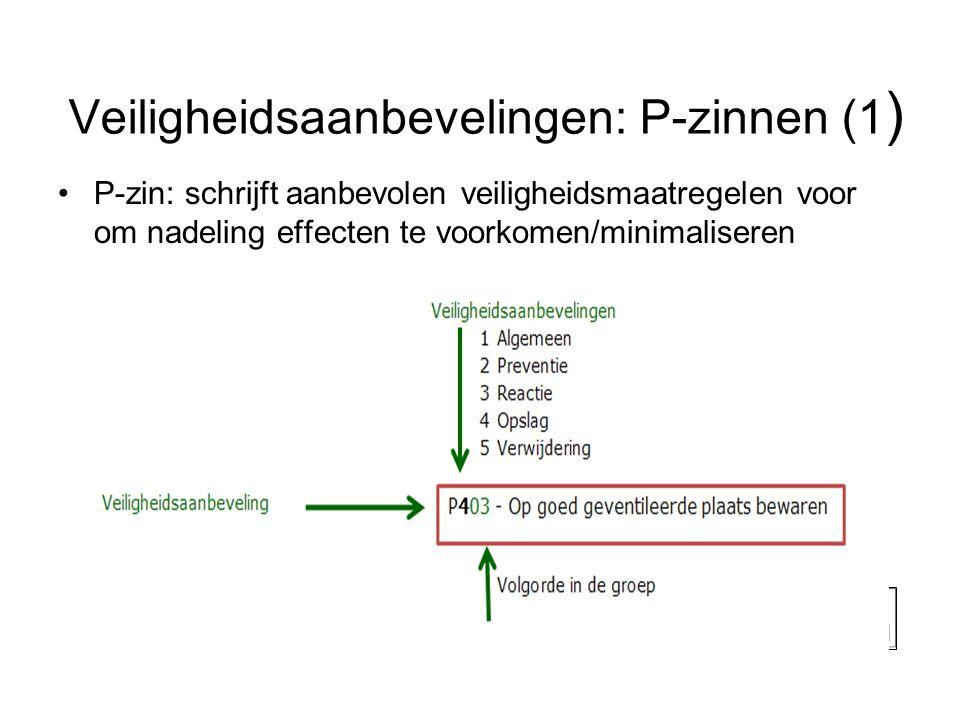 Veiligheidsaanbevelingen: P-zinnen (1)