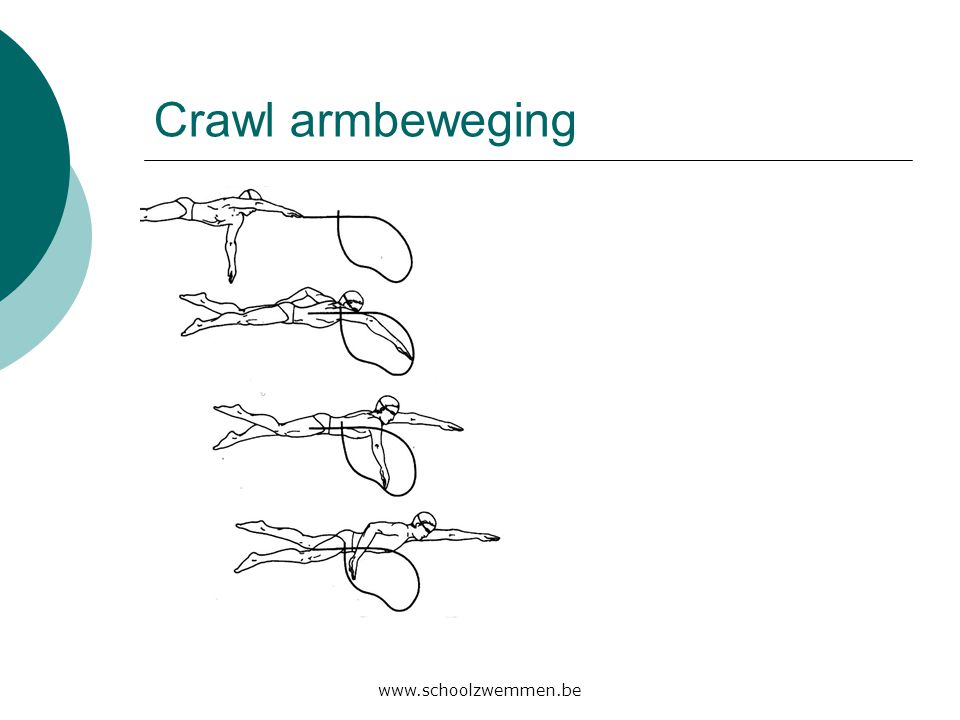 Crawl armbeweging www.schoolzwemmen.be