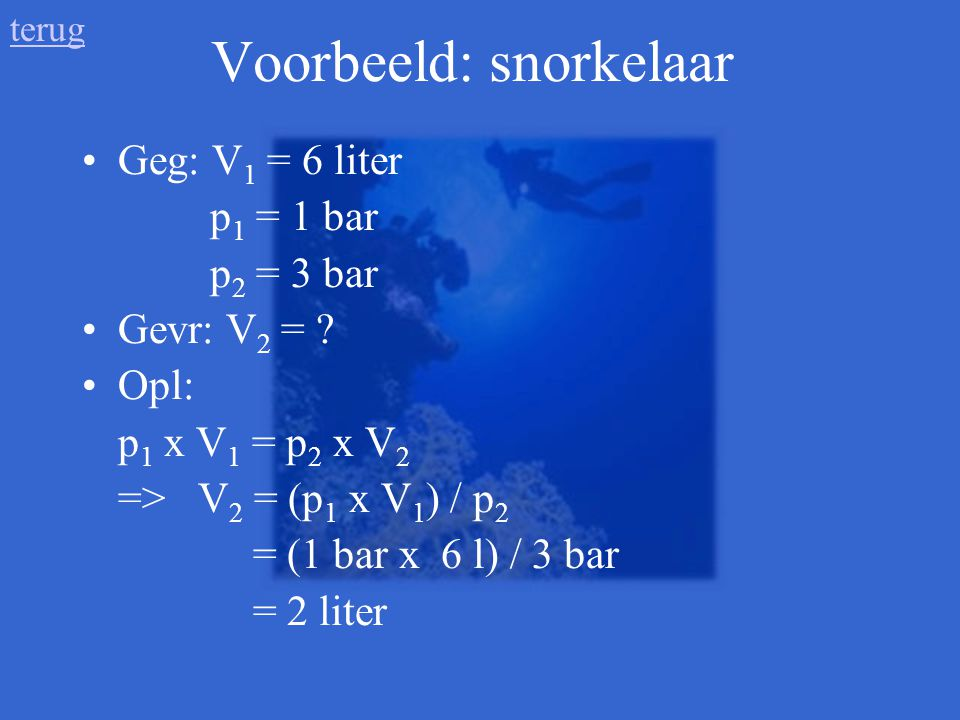Voorbeeld: snorkelaar