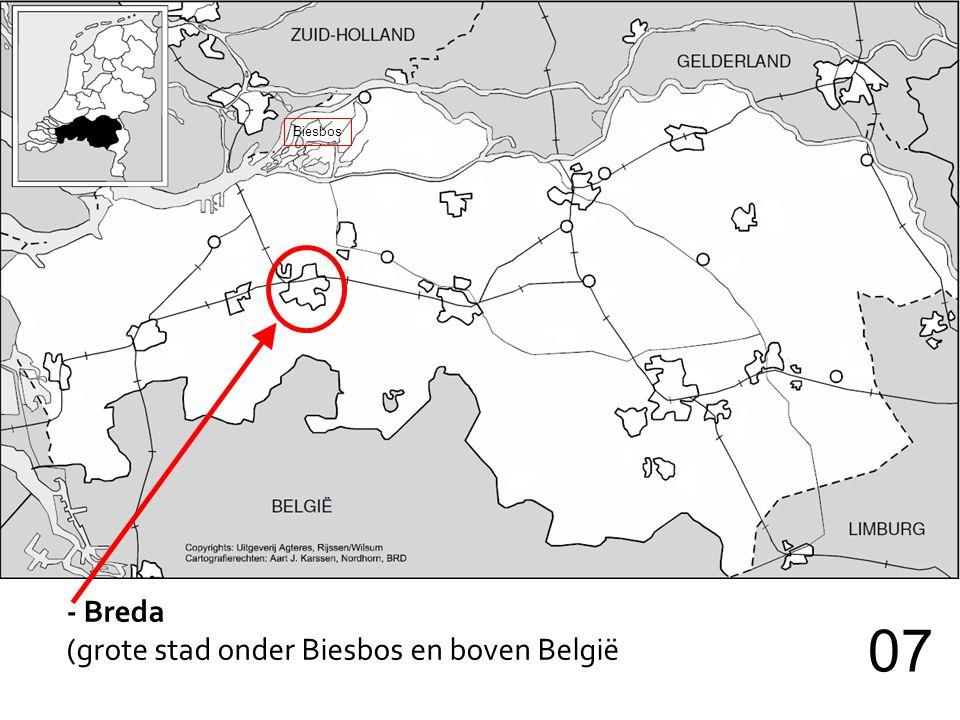 Biesbos - Breda (grote stad onder Biesbos en boven België 07