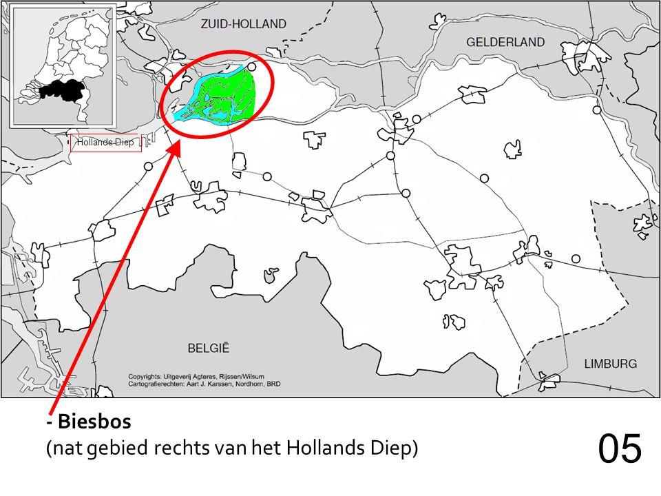 Hollands Diep - Biesbos (nat gebied rechts van het Hollands Diep) 05