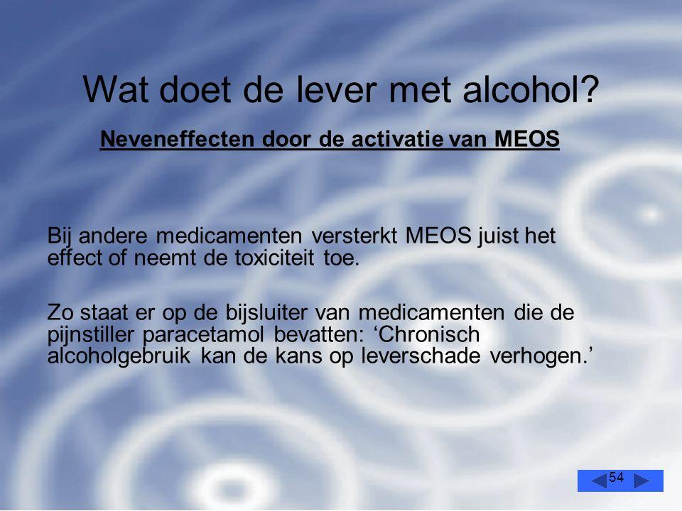 Wat doet de lever met alcohol