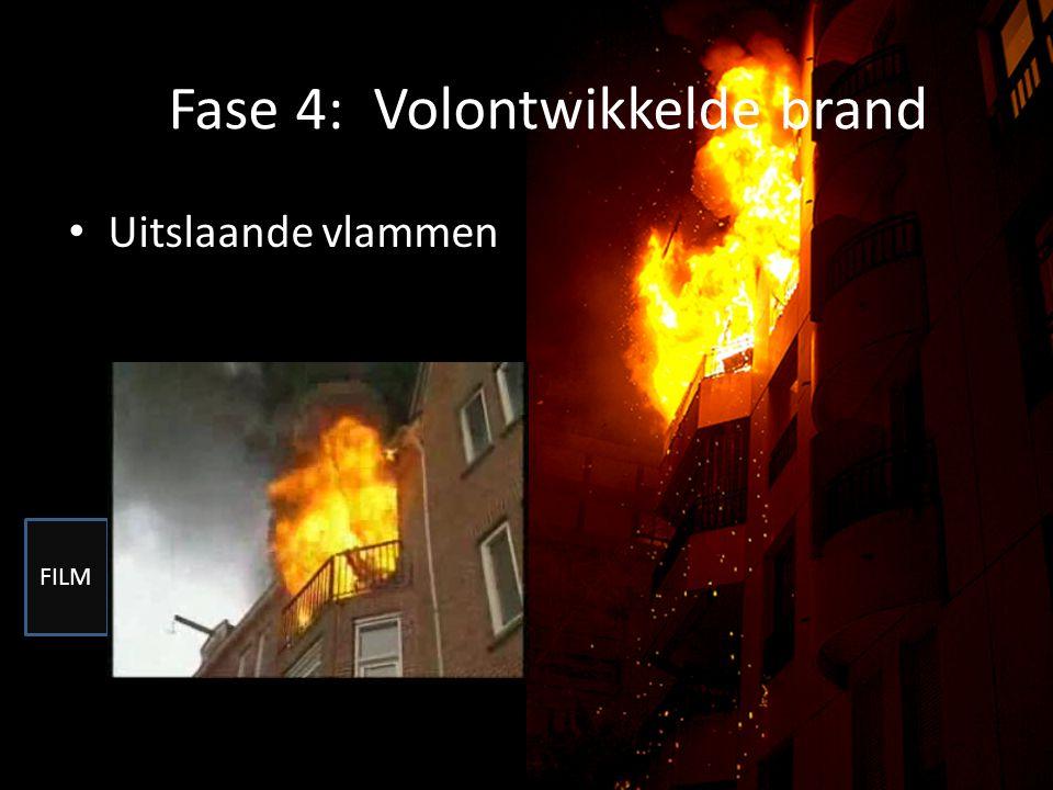 Fase 4: Volontwikkelde brand