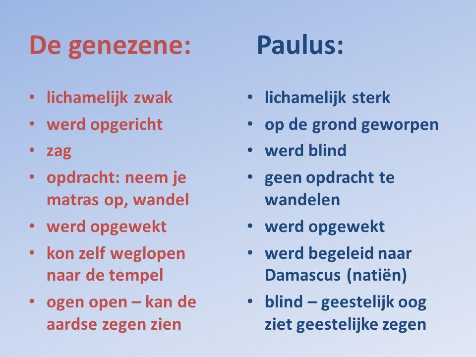 De genezene: Paulus: lichamelijk zwak werd opgericht zag