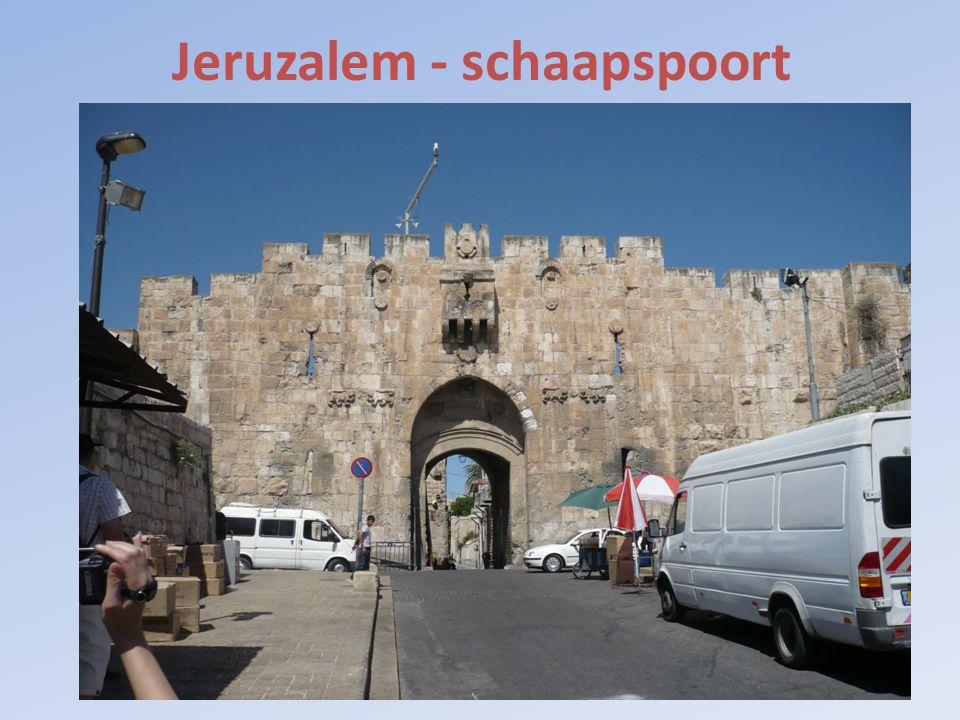 Jeruzalem - schaapspoort