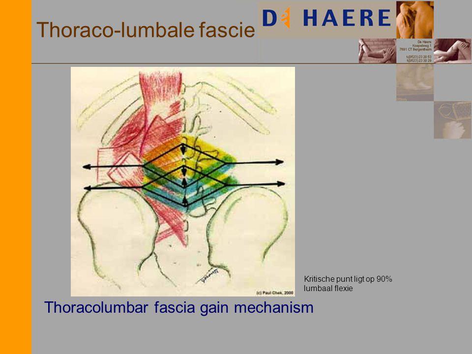 Thoraco-lumbale fascie