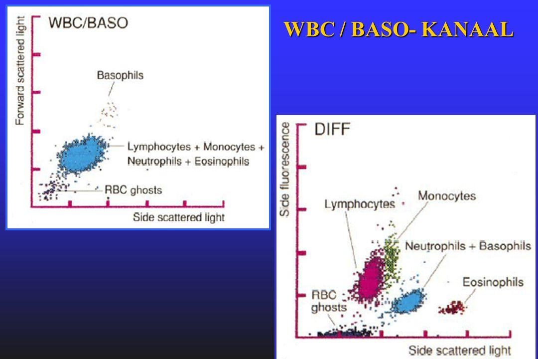 WBC / BASO- KANAAL