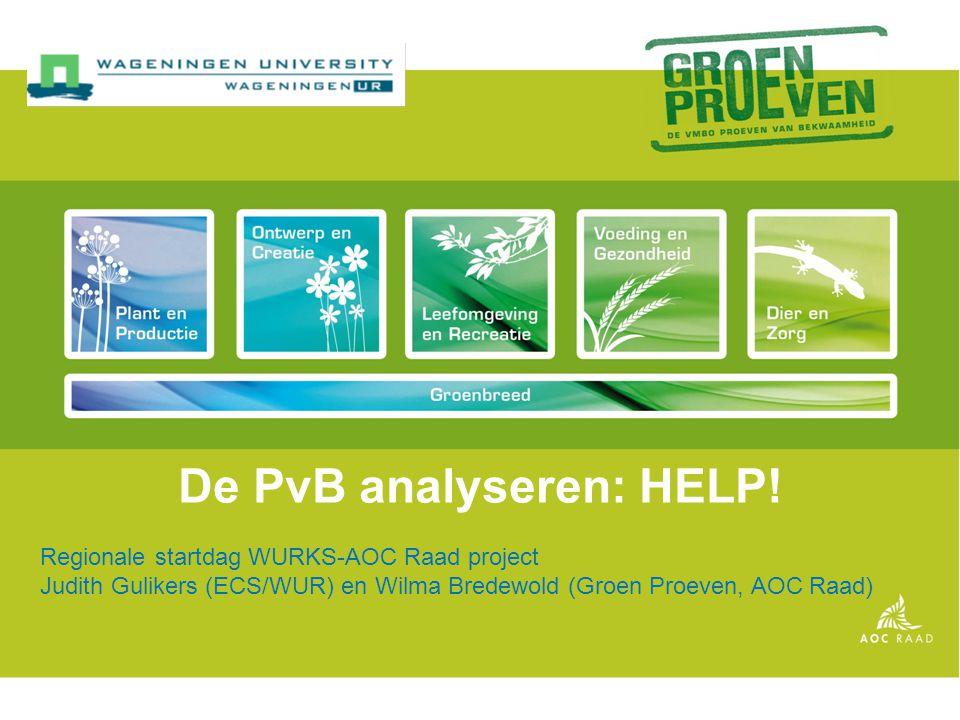 De PvB analyseren: HELP!