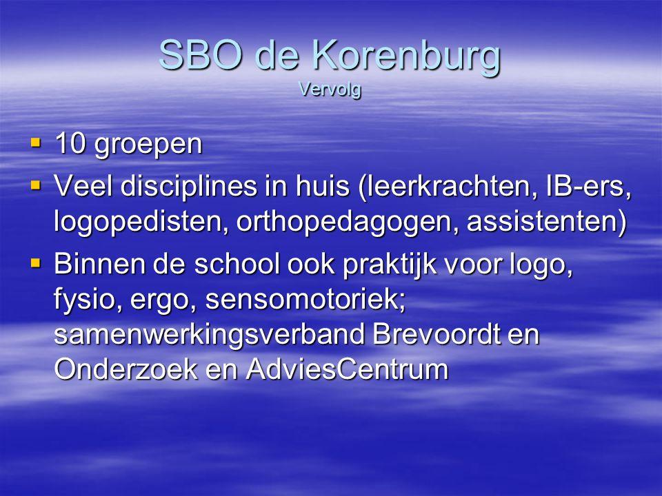 SBO de Korenburg Vervolg