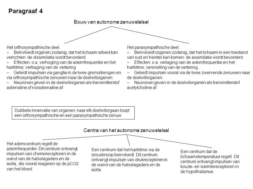 Paragraaf 4 Bouw van autonome zenuwstelsel