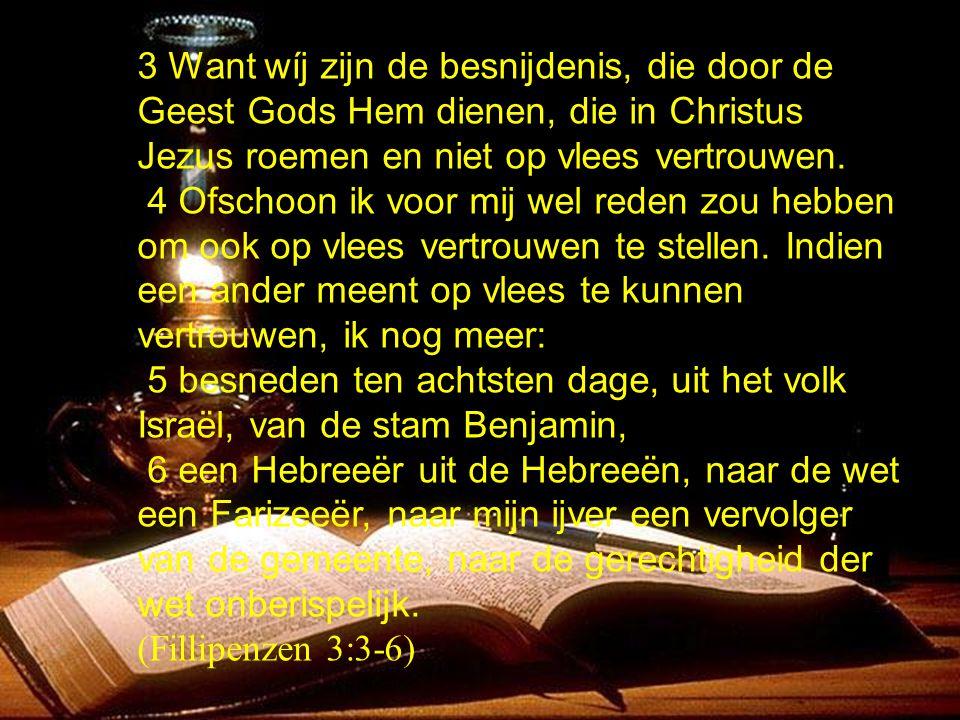 3 Want wíj zijn de besnijdenis, die door de Geest Gods Hem dienen, die in Christus Jezus roemen en niet op vlees vertrouwen.