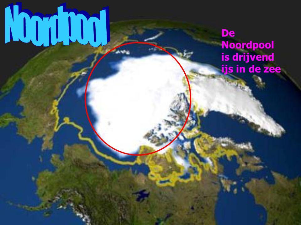 Noordpool De Noordpool is drijvend ijs in de zee