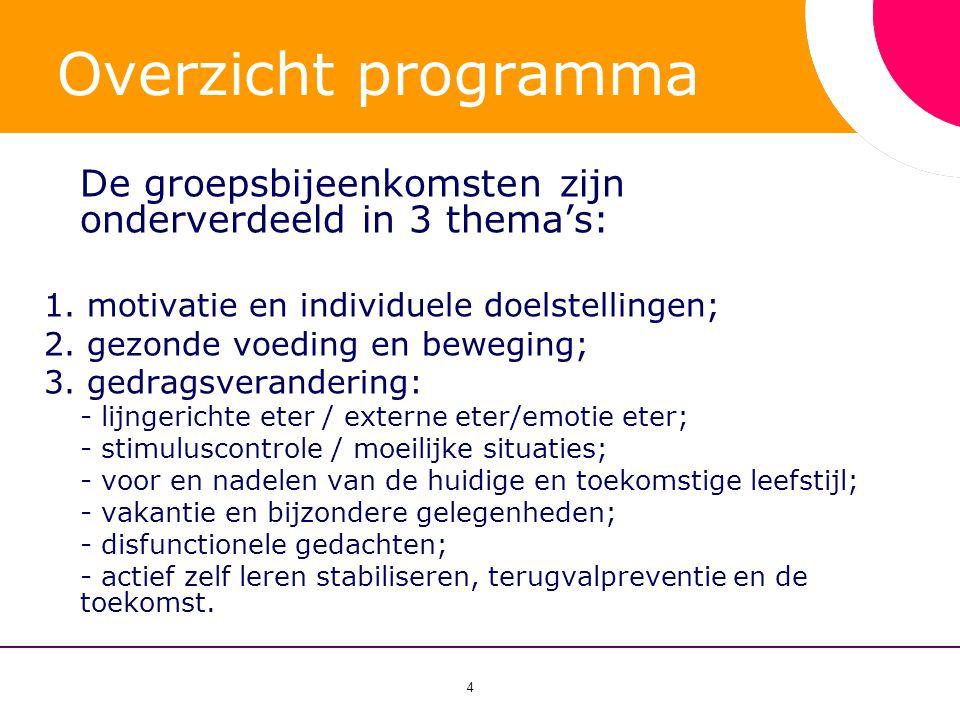 Overzicht programma De groepsbijeenkomsten zijn onderverdeeld in 3 thema's: 1. motivatie en individuele doelstellingen;