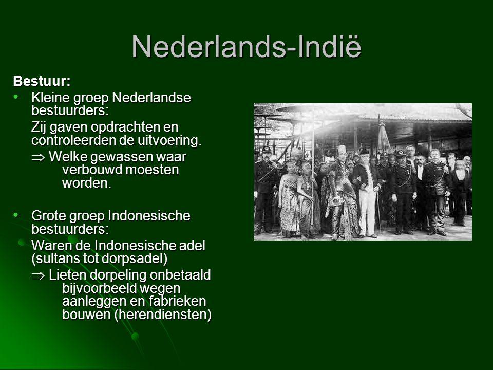 Nederlands-Indië Bestuur: Kleine groep Nederlandse bestuurders: