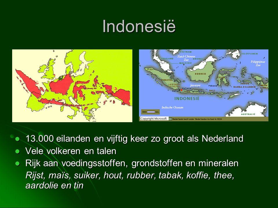 Indonesië 13.000 eilanden en vijftig keer zo groot als Nederland